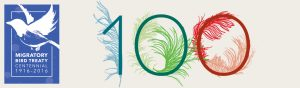 Celebrate 100th Anniversary of the Migratory Bird Treaty