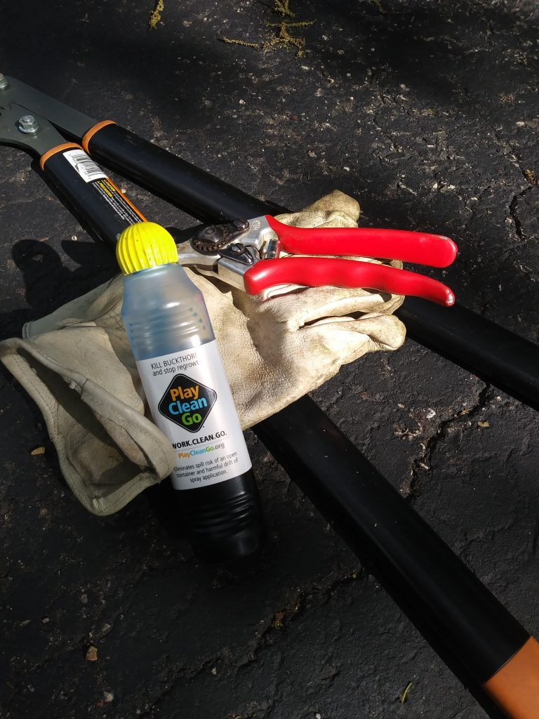 Image of Buckthorn Blaster with gloves, loppers and pruners