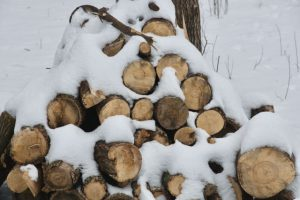 Image of wood pile half covered in snow.