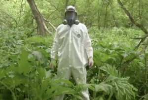 Image of forestry technician in full PPE standing woodland.