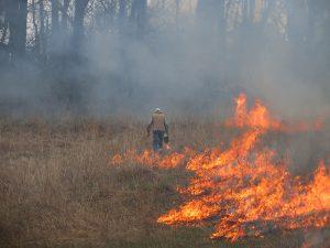 Image of prescribed prairie burn in late April.