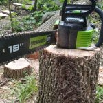 Image of greenworks chainsaw on stump